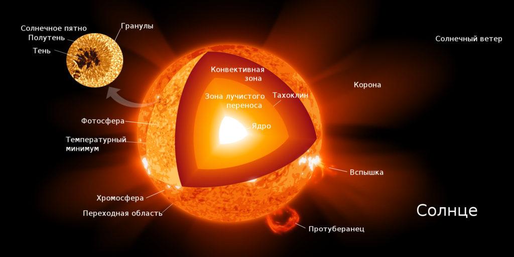 Диаграмма внутреннего строения Солнца.