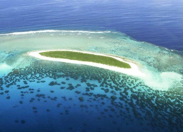 необычный риф