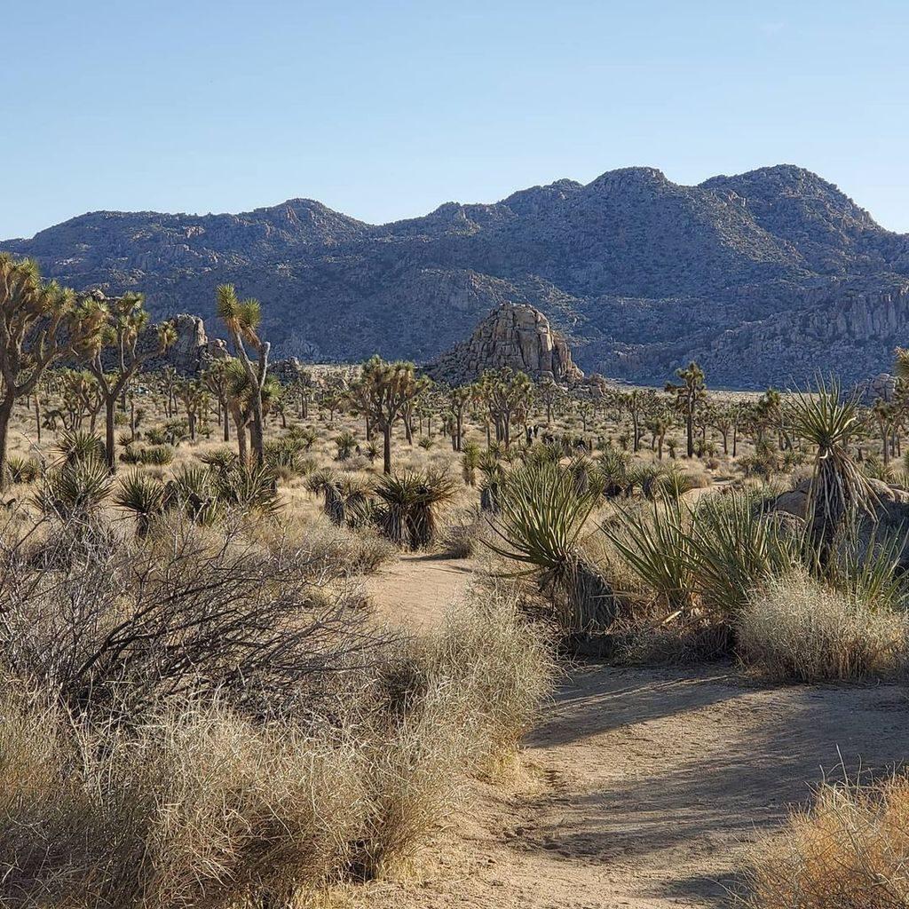 Топ 10 мест с самой высокой температурой: где самое жаркое место на земле