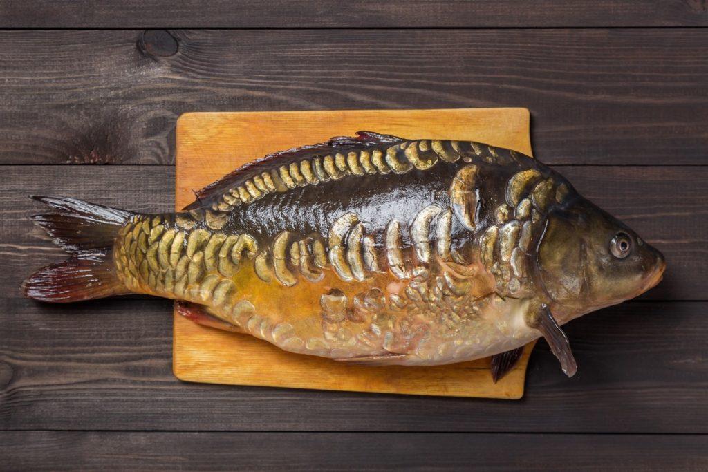 Рейтинг из 10 самых вкусных в мире рыб