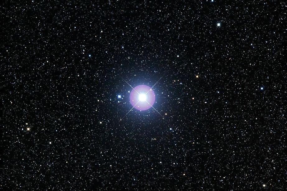 Процион самая яркая звезда