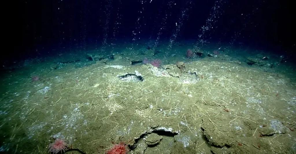 Метан в океане