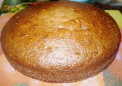 Пирог готов. Теперь его нужно немного остудить. В горячей виде порезать невозможно.