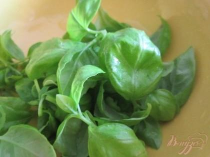 Из листьев базилика приготовить пюре.