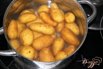 Помытый картофель в кожуре с щёточкой или мочалочкой. Отварить его в воде с добавлением соли. Сцедить, слегка остудить.