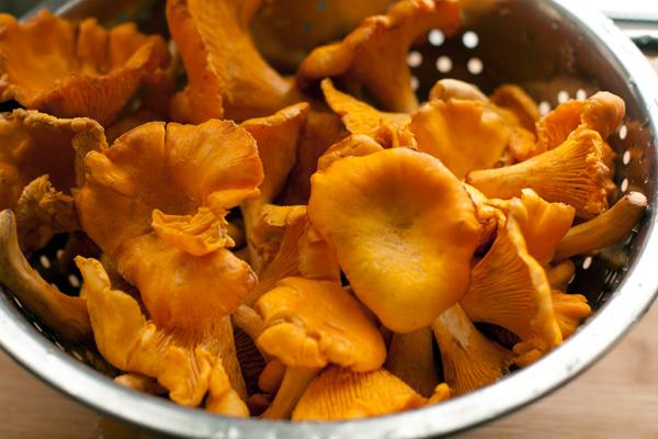 Свежие грибы тщательно очистите от земли, вымойте и обсушите.