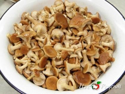Для приготовления маринованных лисичек сначала замачиваем грибы часа на 2. Это облегчит задачу по их дальнейшему мытью. После тщательно моем грибы, обрезая сильно загрязненные участки.