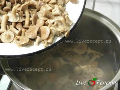 Теперь готовим маринад для маринованных грибов. В кастрюлю наливаем 700 мл воды, насыпаем соль и сахар. Даем закипеть, затем закладываем отваренные грибы и специи. Грибы провариваем 10-15 мин и, в самом конце, добавляем уксус.