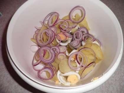 Картофель, яйцо, соленые огурцы, красный лук и яблоко сложить в глубокую миску. Заправить майонезом, посолить и поперчить, все перемешать