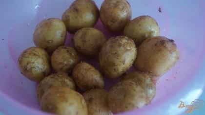 Молодой картофель промыть, посолить и добавить приправу для картофеля. перемешать.