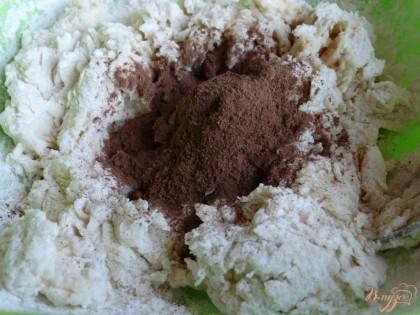 И всыпаем какао-порошок. Все перемешиваем и собираем тесто в комок.