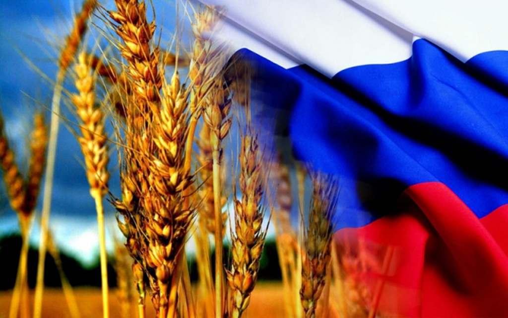Состоялось первое заседание Национального Зернового проектного офиса