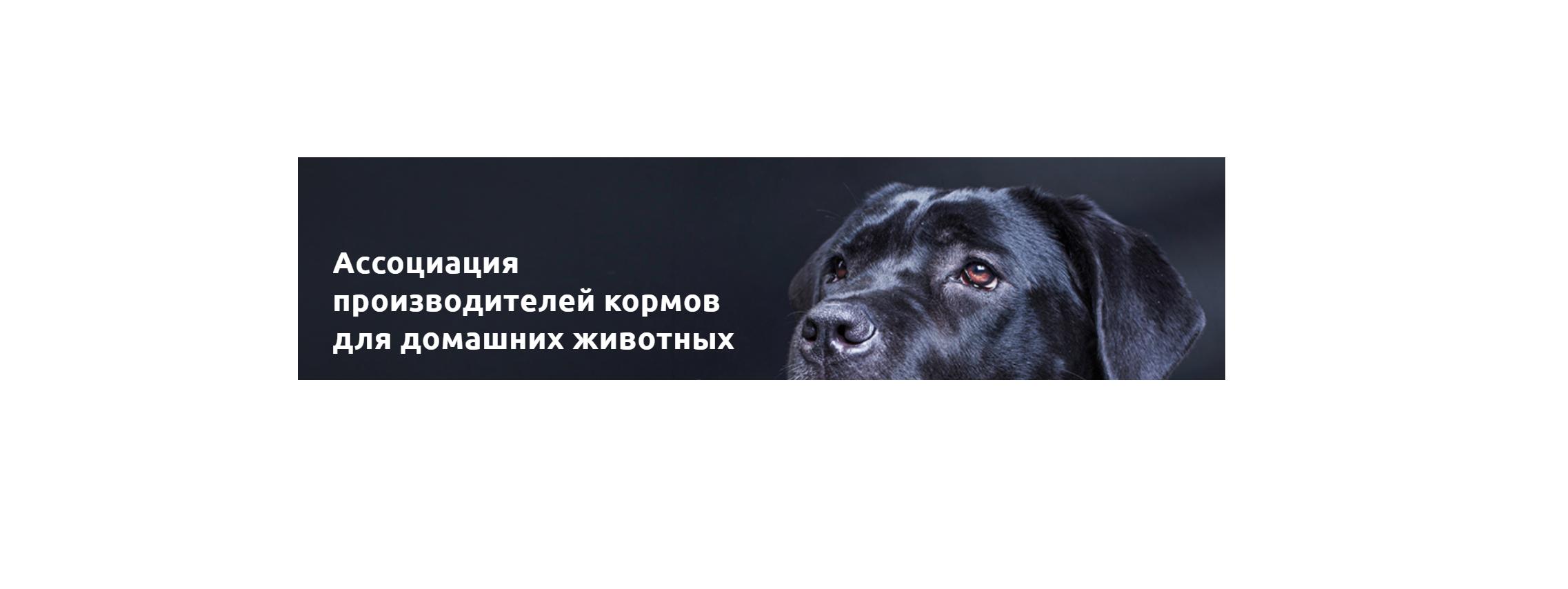 Ассоциации производителей кормов для домашних животных и Конкурс «Регионы - устойчивое развитие» будут совместно развивать российские отраслевые проекты