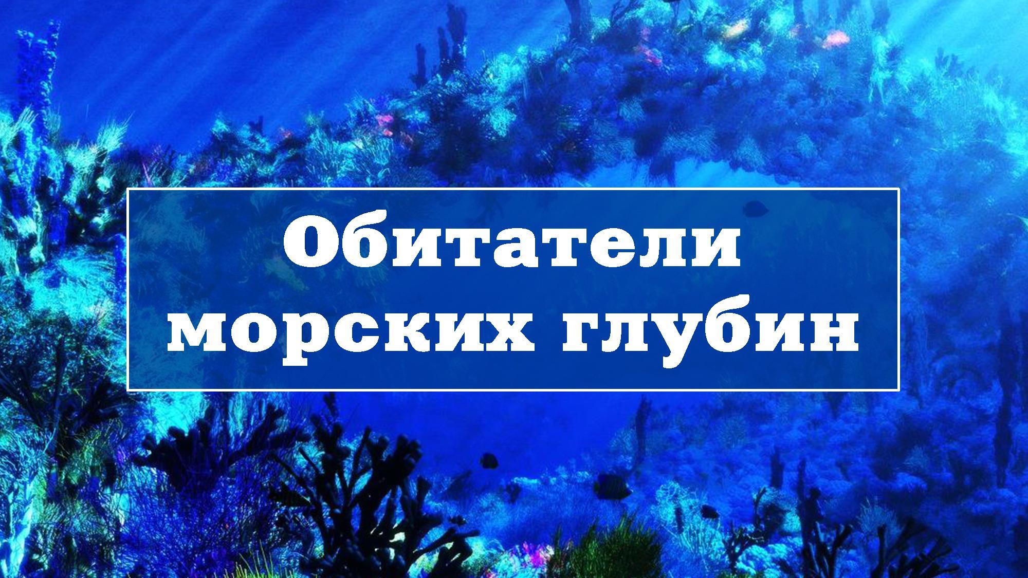 Обитатели морских глубин