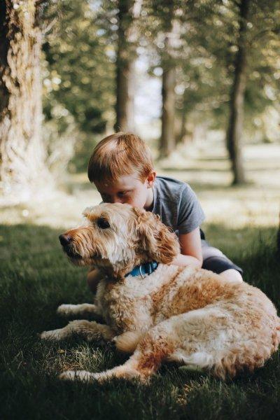 Собака снижает риск развития шизофрении у ребенка
