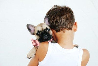 Правила поведения ребенка при встрече с собакой