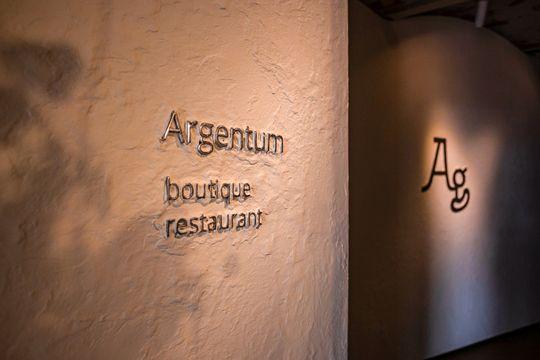 Превью-изображение компании «Argentum»