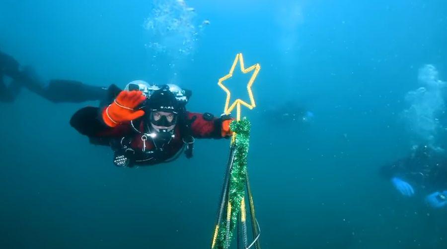 Подводный утренник: самая необычная ёлка во Владивостоке
