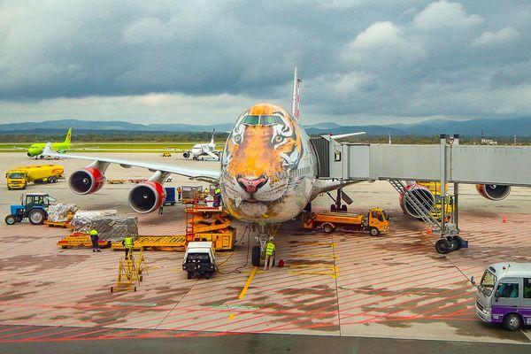 Летать из Владивостока стало дешевле: билеты от 1500 рублей