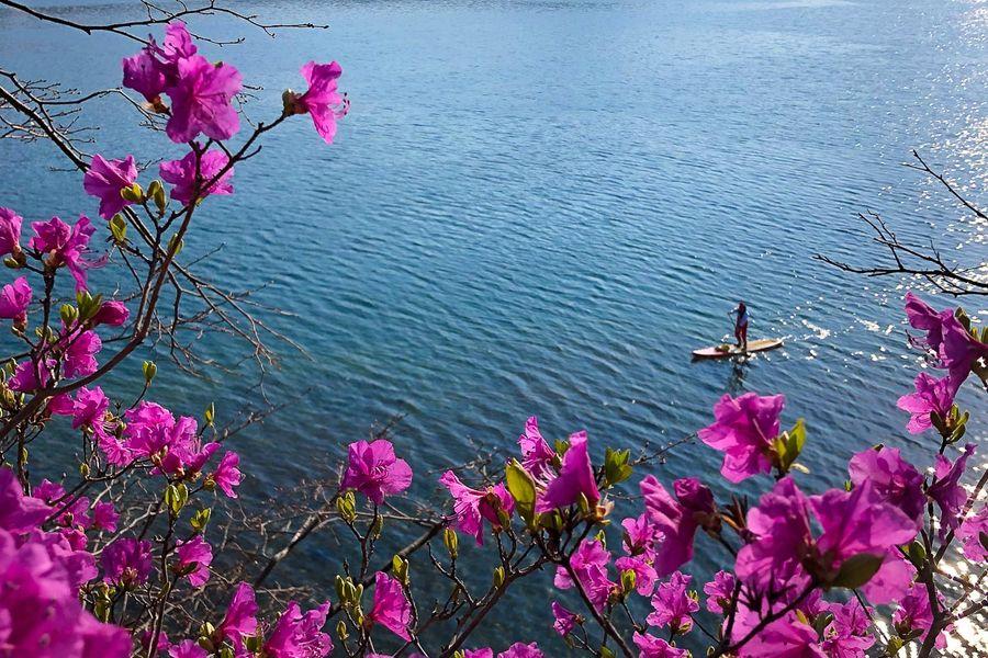 Чек-лист яркой весны: топ-10 туров по Приморью