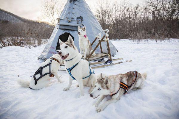 Чек-лист яркой зимы: топ-10 экскурсий для январских каникул