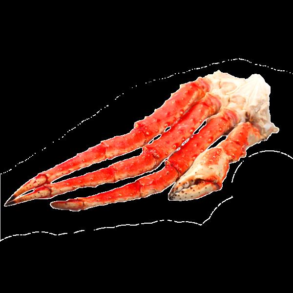 Камчатский краб (фаланга в кости)Размеры: L3-L4