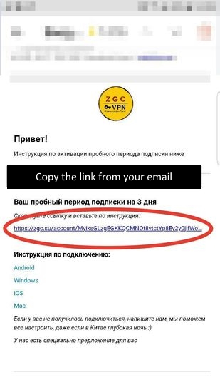 Copy the link (subscription url) from your email