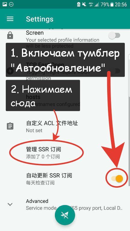 4. Включите автообновление и нажмите на SSR для добавления подписки