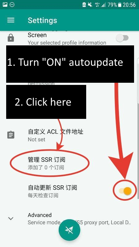 Switch on autoupdate and click on SSR
