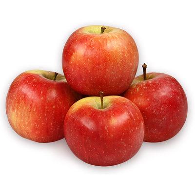 АлесяПлоды средней величины, основная окраска желтая, покровная – ярко-красная.Мякоть плода белая, очень сочная при съеме, сладкая с умеренной кислотой.