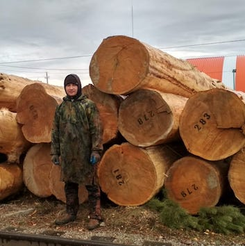 ДИАМЕТР 30-50 см для ОЦБ и Рубки