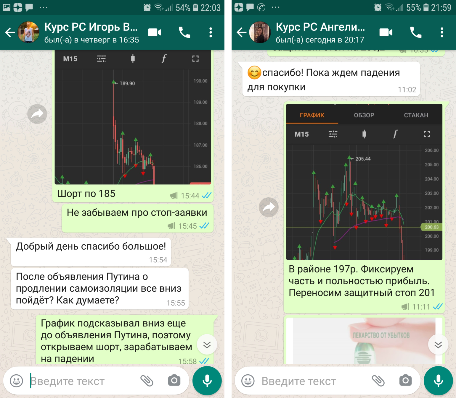 Как выглядит WhatsApp поддержка или сигналы на канале Телеграм?