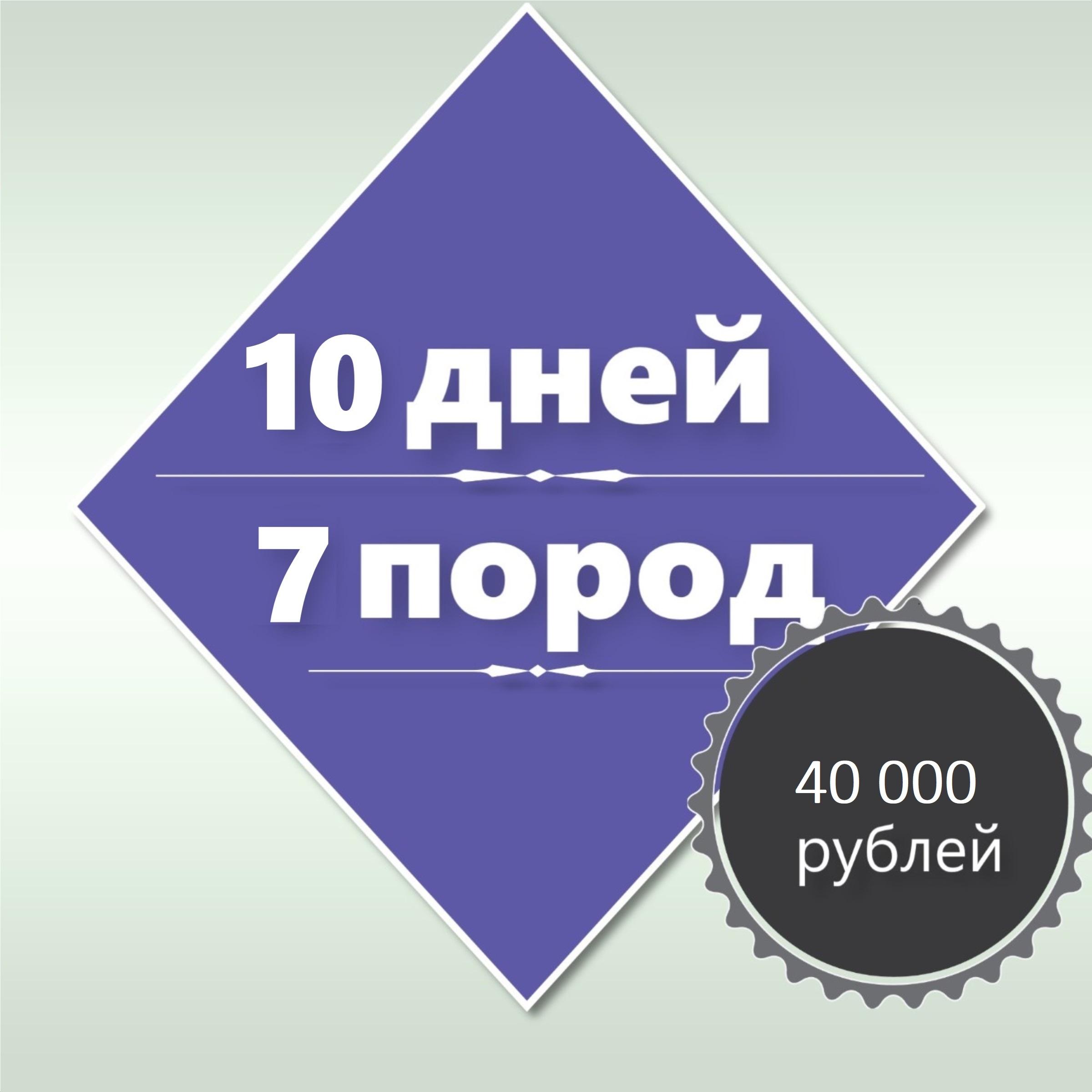 10-дневный курс «Основы груминга»+2 дня стажировки