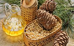 Дерево - фармацевтУ кедра много целебных свойств, заключенных в хвое, орехах (семенах), скорлупе, почках веток, молодых верхушках, смоле (живицы).Препараты из Кедра Сибирского обладают удивительными лечебными свойствами. Особенно Кедр полезен при лечении заболеваний дыхательных путей, пищеварительной и мочеполовой системы, почек, печени, сердечно-сосудистых заболеваний.