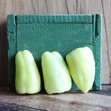 Перец зеленый «Долма»