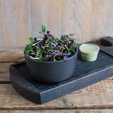 Салат из микрозелени Botanica №2