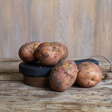 Картофель «Синеглазка»