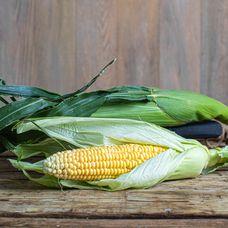 Кукуруза в початке
