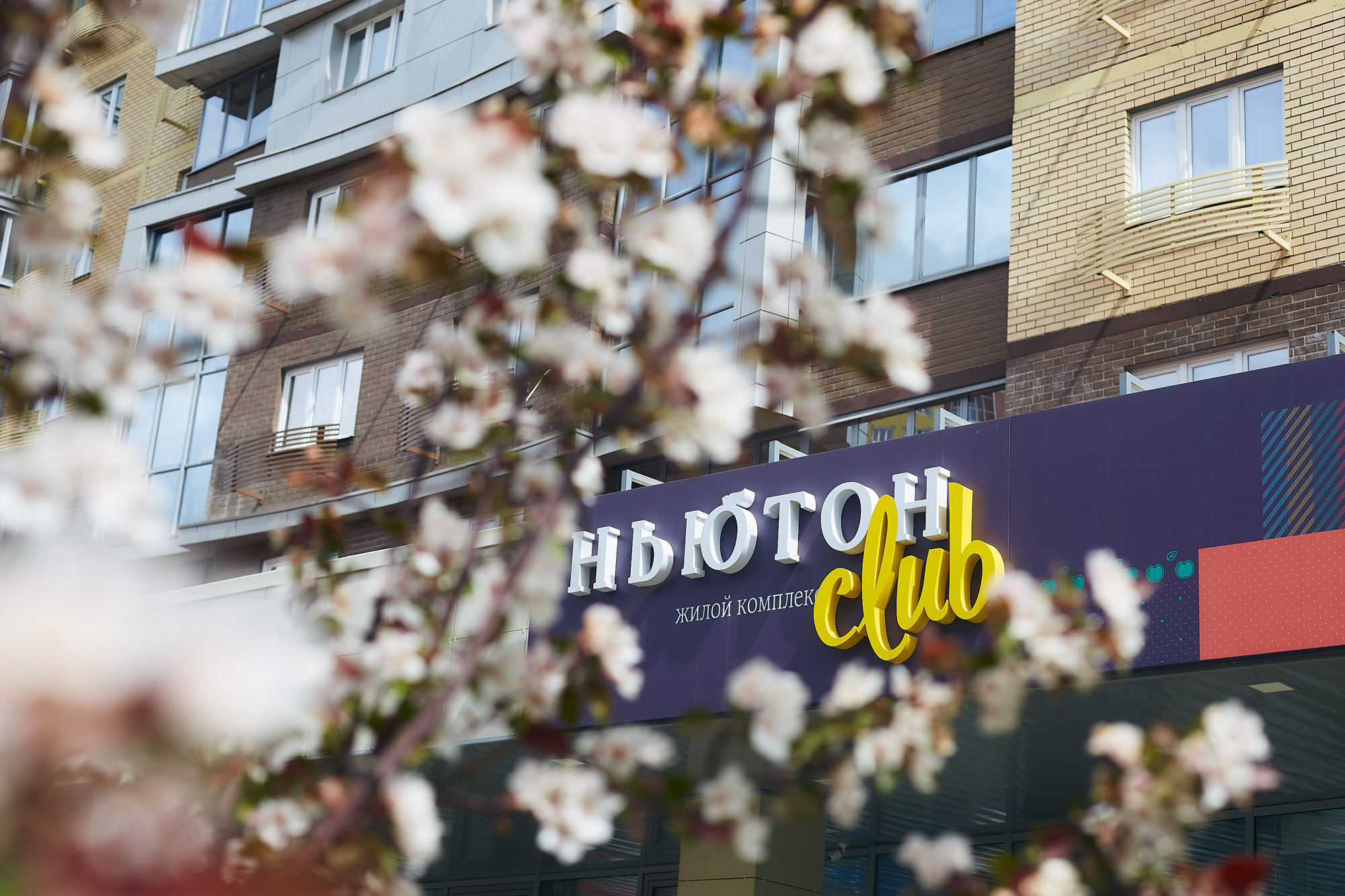 Ньютон клуб москва киев стриптиз бар