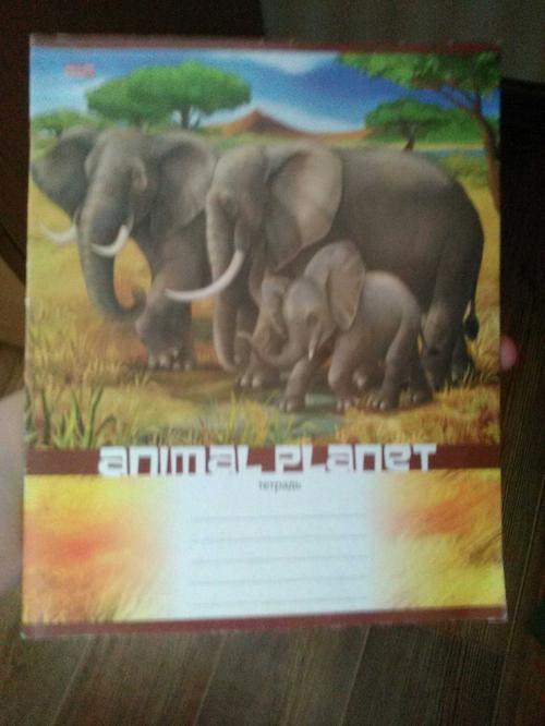 Book (ISBN: 5378163439)