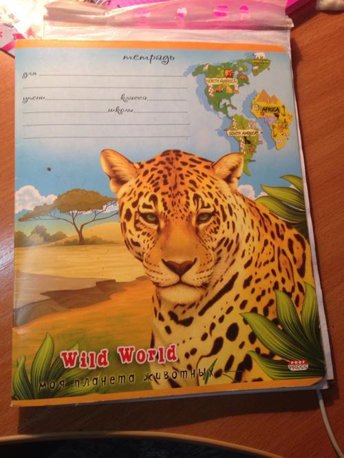Book (ISBN: 5378226953)