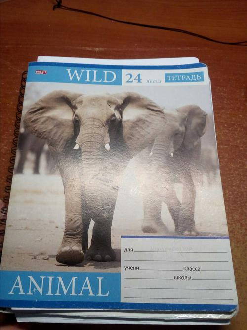 Book (ISBN: 5378227097)