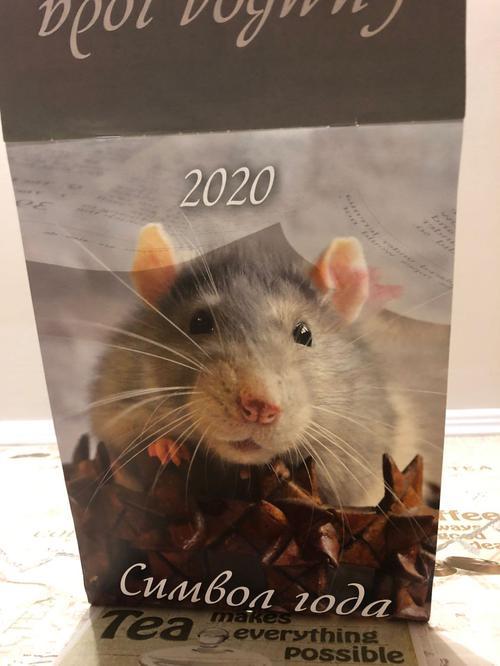 описание Календарь 2020 год крысы. На стену