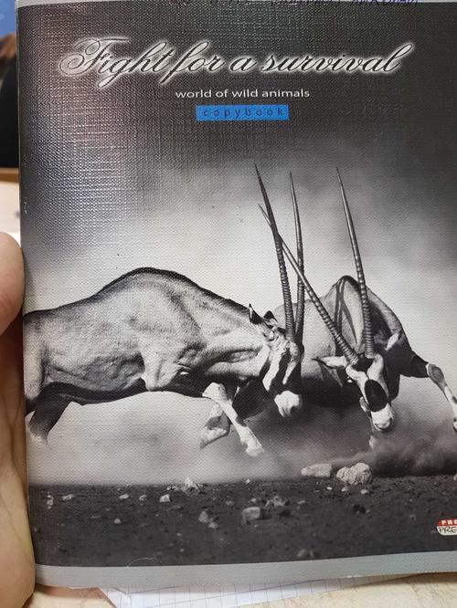 Тетрадь Жизнь Животных