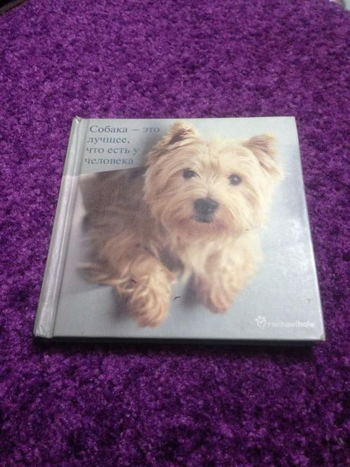 Faithful Friends: 1 (Rachael Hale Giftbooks RG057)