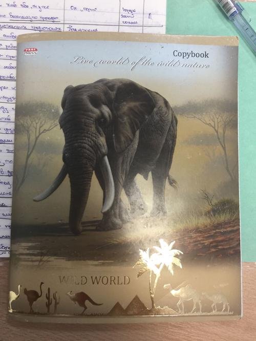 Book (ISBN: 5378154812)