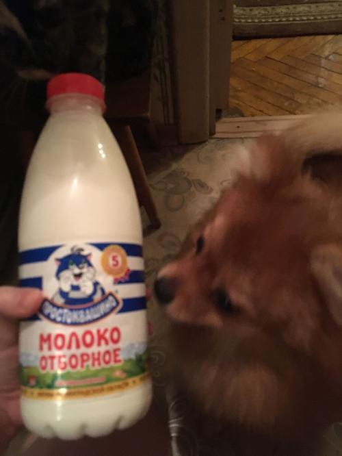 фото44 Молоко Простоквашино, цельное отборное питьевое пастеризованное , 930мл.