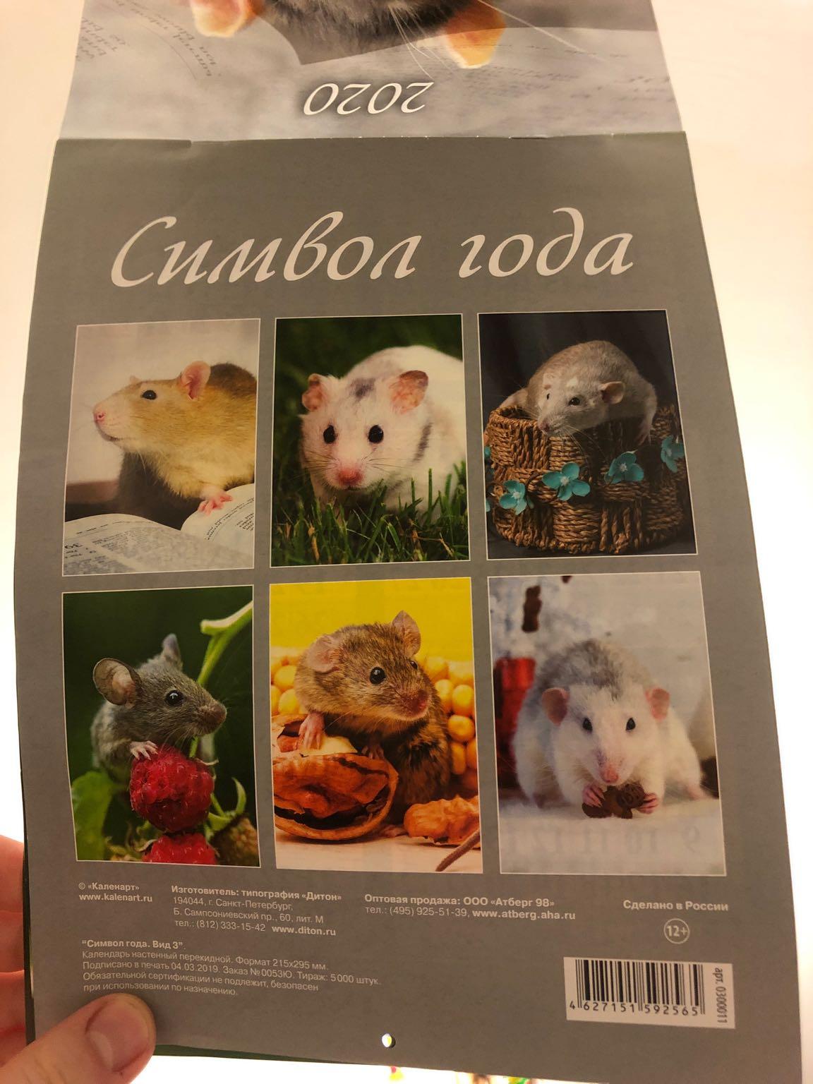 отзыв Календарь 2020 год крысы. На стену
