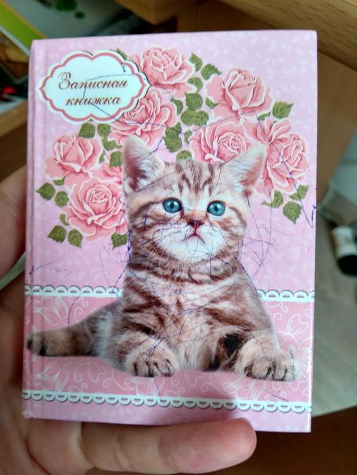 Книга записная A7 64лист котенок на розовом 642425 проф-пресс