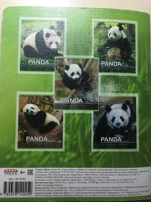PANDA copybook